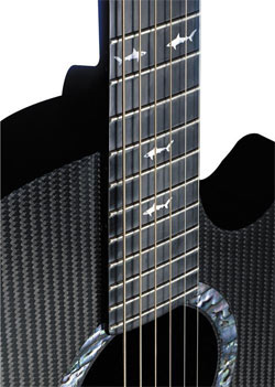 Rainsong W1000 carbon fiber acoustic guitar
